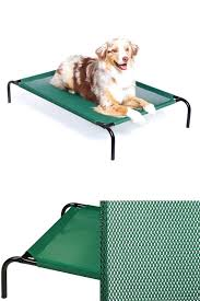 coolaroo pet bed extra large dog elevated cot in outdoor raised steel frame cover