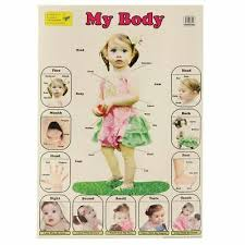 My Body Parts Wall Chart Poster Children Early Learning