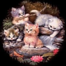 """Résultat de recherche d'images pour """"GIFS les chats"""""""