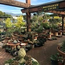 terra garden center photo of sol garden center ca united states terra garden center vaughan terra