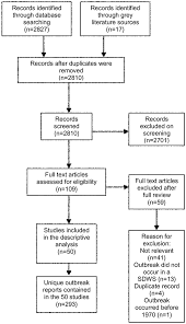 Flowchart of literature review process