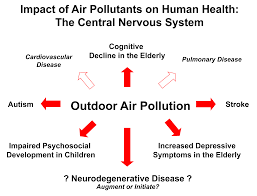 air pollution and microglia the block lab air pollution impacts brain health 1