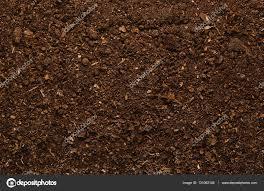 fertile garden. Fertile Garden Soil Texture Background Top View \u2014 Stock Photo B