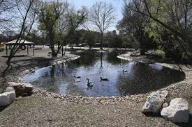 San Antonio neighborhood duck pond goes from fowl to fabulous on the North  Side - ExpressNews.com