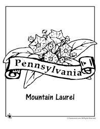 Small Picture State Flower Coloring Pages Pennsylvania State Flower Coloring
