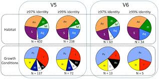 Each Pie Chart Is Comprised Of Sequences That Were Either
