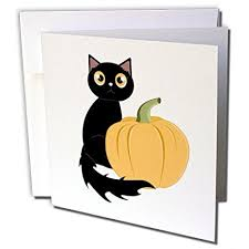 cute halloween black cat. Interesting Cat Janna Salak Designs Halloween  Cute Black Cat And Pumpkin 1  Greeting Card With And