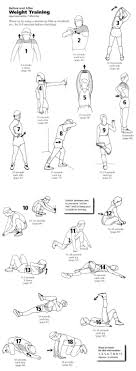 Free Hand Workout Chart Actual Printable Stretching Exercises For Seniors Free Hand