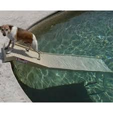 fascinating dog pool ramp canada