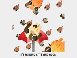 animated raining cats and dogs.  Dogs The New York Company Amino Apps Trusted Us To Make Several Packages Of  Animated Stickers For The Premium Version Their Application To Animated Raining Cats And Dogs C