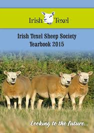 irish texel year book 2015 by agri images issuu