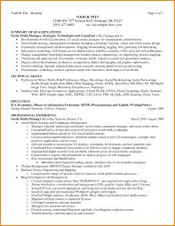 Resume Summary 100 Resume Summary Of Qualifications Ledger Review 54
