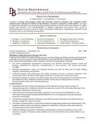 Executive Summary Resume Sample