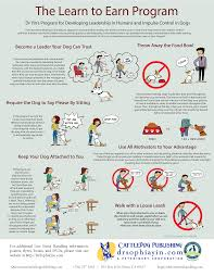 Free Downloads Posters Handouts And More Dr Sophia Yin