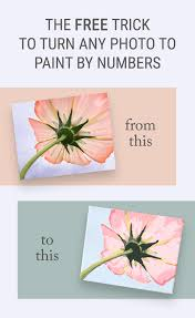 how to turn a photo into paint by numbers