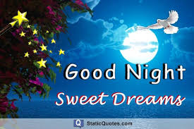 Quotes About Sweet Dreams And Goodnight Best Of 24 Sweet Dreams Good Night Quotes StaticQuotes Static Quotes