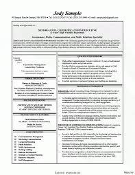 Unusual Director Level Resume Samples Download Sample Public