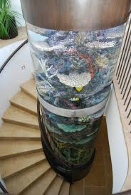 Cool Aquariums Aquarium Columns I Want One At Home Water Water Everywhere