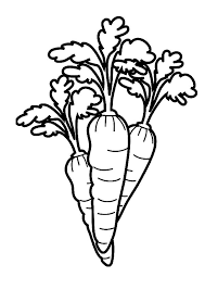 Small Picture Carrot Coloring Pages Printable Coloring Coloring Pages