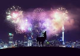 <b>Happy New Deer</b> | Photo, Fireworks, Sun and clouds