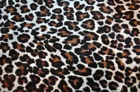 Leopard Print Wallpaper Bedroom Elegant Leopard Print Wallpaper For Bedroom Home Decor Ideas