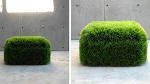 Moss Mats Removing Moss Carpet Outdoors Interior Home Design