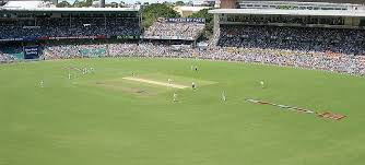 Image result for cricket india