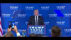 Clinton refuses to concede, with Trump on the verge of being ...