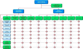 Engineering Organization Structure Chart For Company Functional Vs