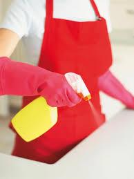 clean kitchen: spray surfaces rx dk hsw spray counter sxjpgrendhgtvcom