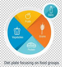 Dietitian Chart Dietary Supplement Healthy Diet Food Dietitian Png Clipart