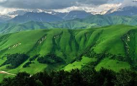 Grass Green Mountains & Trees stock photos