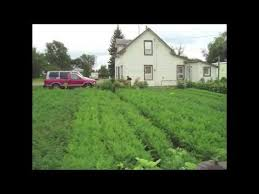 Get Started With Spin Farming  Cornell Small Farms ProgramBackyard Farming On An Acre