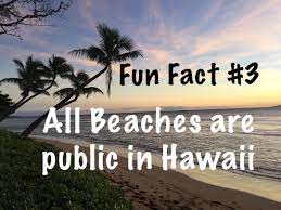 Fun Fact Friday! Did you know that all beaches in Hawaii are open to the  public!? It's true. You won't ever find a bea… | Hawaii beaches, Fun fact  friday, Fun facts