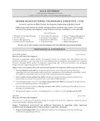 Cio Resume Example Best Of Cto Resume Example Examples Of Resumes
