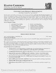 management analyst resume objective resume sample management    resume design