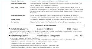 Best Place To Post Resume Delectable Best Place To Post Resume Unique Indeed Post Resume Luxury