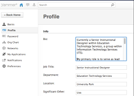 profile title example