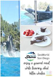 dine with shamu seaworld san go