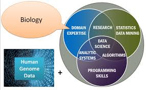 Venn Diagram Bioinformatics File Bioinformatics Png Wikimedia Commons