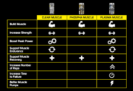 Muscle Recovery Time Chart Plasma Muscle Muscletech