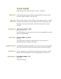 Basic Resume Fascinating Basic Resume