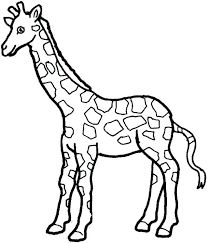 Zoo Animal Coloring Page Cremzempme