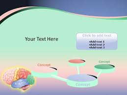 Brain Anatomy Powerpoint Presentation | Brain Anatomy Powerpoint ...
