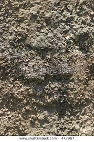 dirt texture seamless. Wall Of Dirt Texture (seamless) Dirt Texture Seamless D