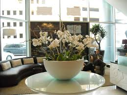 Plant Interior Design Inspiration Alteza Natura Enhancing The Built Environment Indoor Office