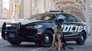 2018 ford police vehicles. brilliant vehicles ford unveils a new hybrid police car for highspeed chases  apr 10 2017 for 2018 ford vehicles h