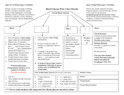 Blood Glucose Flow Chart Doc