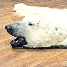 polar bear rug polar bear carpet polar bear rug full size of bear rug cost polar polar bear rug