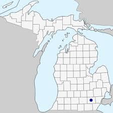 Lamium album - Michigan Flora